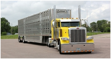 Long Distance Livestock Hauling